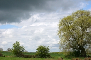 1389739_english_countryside_scene_in_springtime_