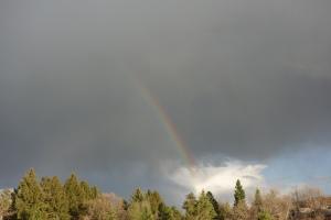 Thr rainbow struggles to make its mark